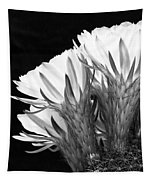 Brilliant Blossoms Diptych Left Tapestry