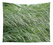 Brome Grass In The Hay Field Tapestry