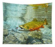 Brook Trout And Artificial Fly Tapestry