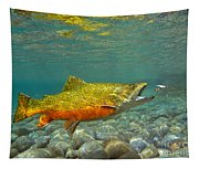 Brook Trout And Coachman Wet Fly Tapestry