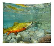 Brookie With Wet Fly Tapestry