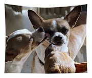 Brotherly Love Tapestry