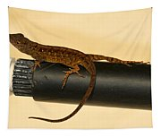Brown Anole On Pipe Tapestry
