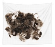 Brown Hair White Background Tapestry