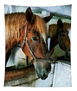 Brown Horse In Stall Tapestry