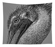 Brown Pelican In Black And White Tapestry