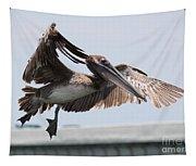 Brown Pelican Landing Tapestry