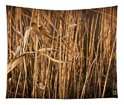 Brown Reeds Tapestry