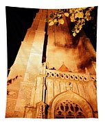Brugge Cathedral At Night Tapestry