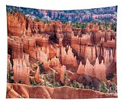 Bryce Canyon Utah Views 508 Tapestry