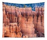 Bryce Canyon Utah Views 90 Tapestry