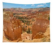 Bryce Canyon Valley Walls Tapestry