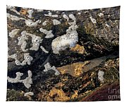 Bubbles Afloat Tapestry