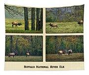 Buffalo National River Elk Tapestry