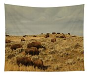 Buffalo On The Prairie Tapestry