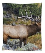 Bugling Bull Tapestry by Mark Kiver