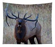 Bull Roar Tapestry