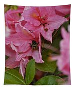 Bumblebee In Pink Tapestry