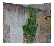 Window With Ivy Tapestry