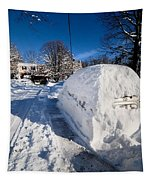 Buried In Snow Tapestry