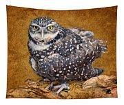 Burrowing Owl Portrait Tapestry