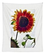 Burst Of Sunflower Tapestry