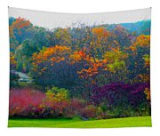 Bursting With Color 1 Tapestry