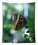 Buterfly 4 Tapestry