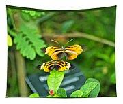 Butterflies Gentle Courtship  3 Panel Composite Tapestry