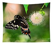 Butterfllies And The Crystal Balls Tapestry