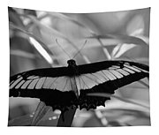 Butterfly Bat Tapestry