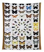 Butterfly Collection Tapestry
