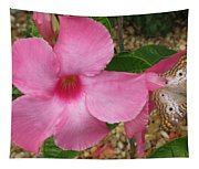 butterfly on the Mandevilla Tapestry