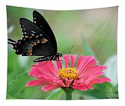 Butterfly On Zinnia Tapestry