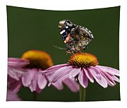 Butterfly Red Admiral On Echinacea Tapestry