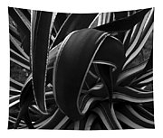 Bw Variegated Agave Tapestry
