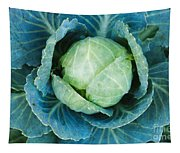 Cabbage Painterly Tapestry