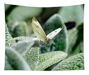 Cabbage White Butterfly In Flight Tapestry