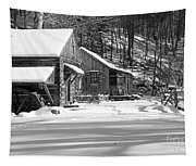 Cabin Fever In Black And White Tapestry