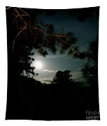 Cabin Moon Tapestry