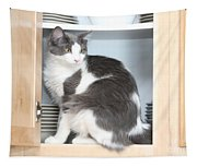 Cabinet Cat Tapestry