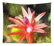 Cactus Bloom Tapestry