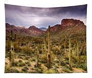 Cactus Canyon  Tapestry