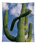 Cactus In The Clouds Tapestry