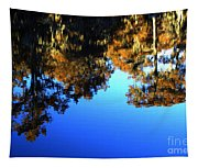 Caddo Lake Reflections Tapestry