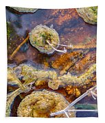 Cafe Au Lait Hot Springs Tapestry