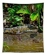 Caiman Cocodilus Tapestry by Gary Keesler