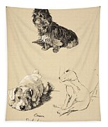 Cairn, Sealyham And Bull Terrier, 1930 Tapestry