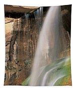Calf Creek Falls Ut Usa Tapestry