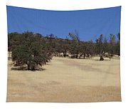 California Grass And Oak Trees Tapestry
